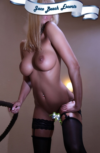 san jose blonde escorts