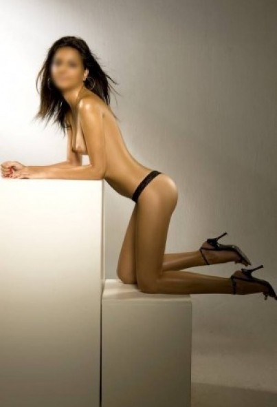 escort europe privat sex herford